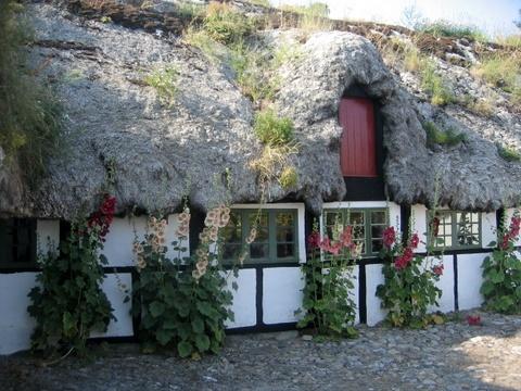 seaweed house on Læsø, Denmark