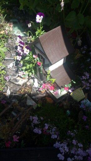 2nd fairy garden