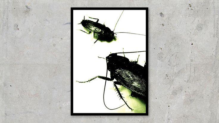 Evil Toxic Cockroaches