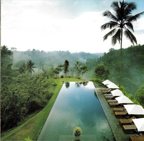 A pool like this, PLEASE!  ---  Alila Ubud hotel - Kerry Hill Architects