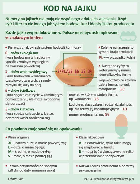 Świadomy konsument – Co oznacza kod na jajku?
