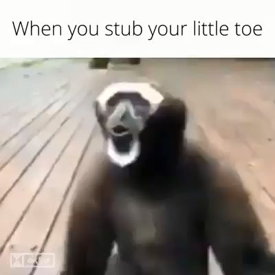 When You Stub Your Toe
