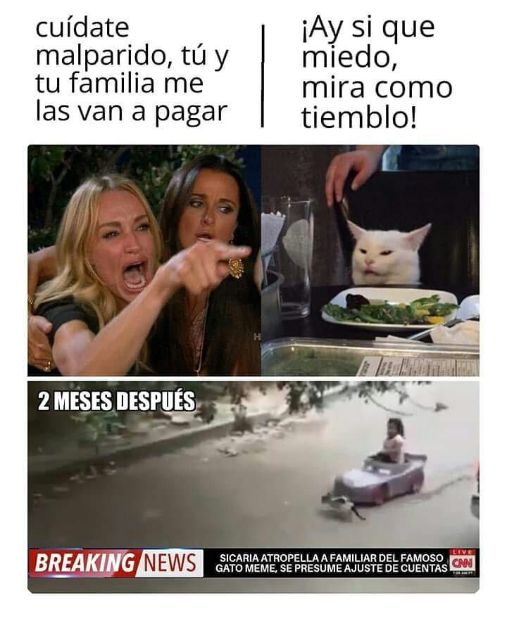 Momazos Meme Memes 2019 Xdxdxd Jajaja Lol Humor Memesenespanol Memes Mejores Memes Memes Divertidos