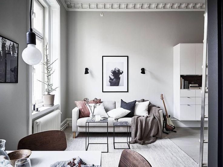 Decoración de mini apartamentos: salón en estilo nórdico con muy pocos muebles y acogedor