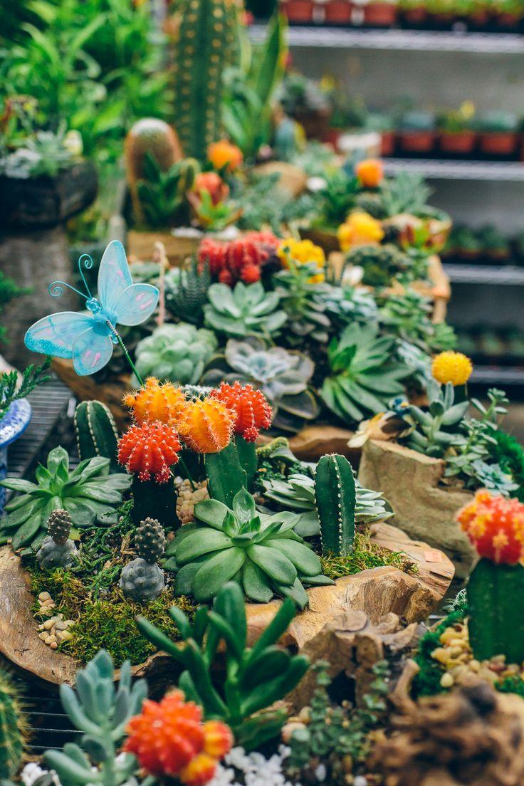 Takashi murakami sun flowers and contemporary art uniqlog - L A Flower Market Santa Monica