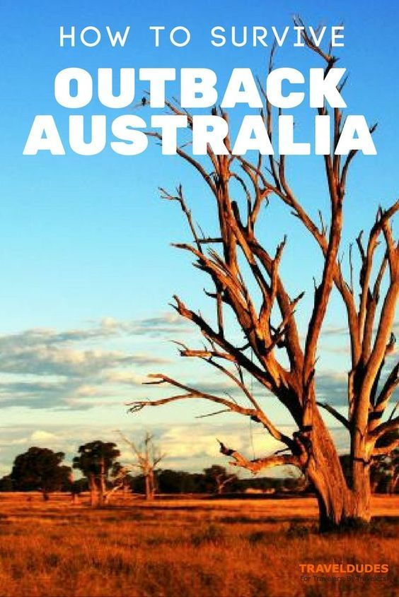 Five Tips for Surviving the Outback in Australia - Hot, harsh, and hauntingly beautiful! That's the best way I can think to describe Outback Australia, and particularly the places I visited: tiny White Cliffs, struggling Wilcannia, and artsy Broken Hill | TravelDudes Social Travel Community and Blog