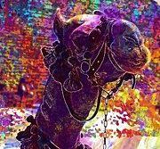 "New artwork for sale! - "" Camel Mount Decorated Egypt Animal  by PixBreak Art "" - http://ift.tt/2vZfixo"