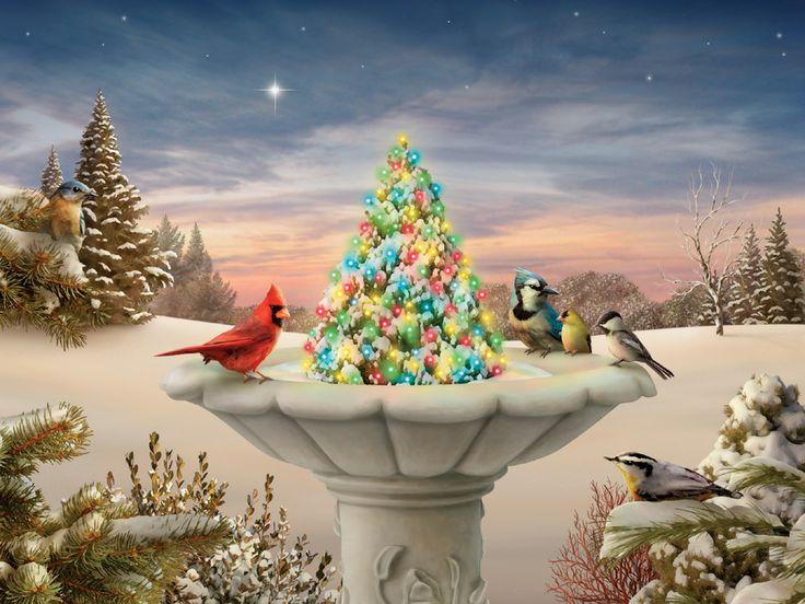 117 Best Alan Giana Images On Pinterest Christmas