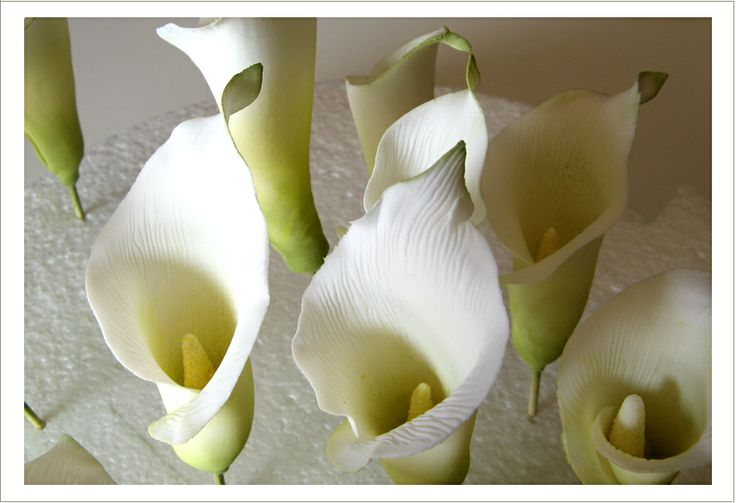 Sugar Calla Lilies from Superfine Bakery