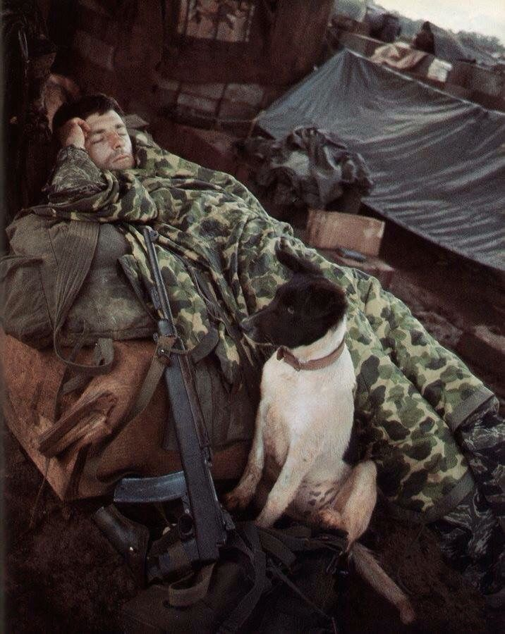 Military photos : Photo