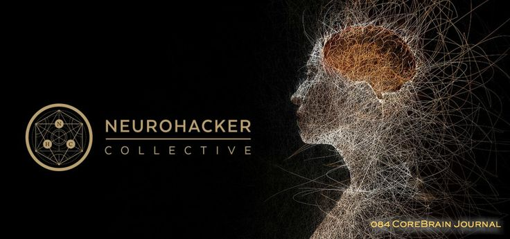 Neurohacker insights translated complex systems into utilitarian answers with