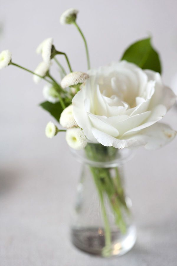 1000 images about flower arrangement on pinterest for Small rose flower arrangement