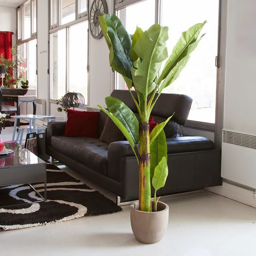 1000 id es sur le th me plantes artificielles sur for Idee deco plante interieur