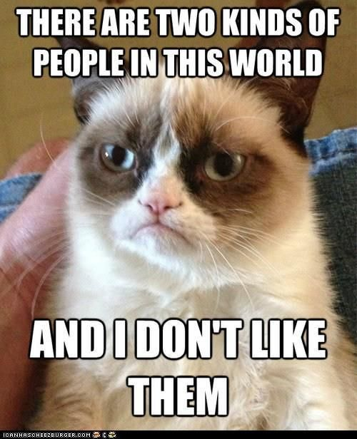 Grumpy Cat does not like them