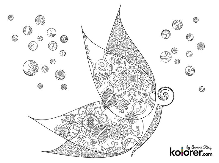 Abstract Butterfly Coloring Pages : Best images about adult coloring book art therapy on