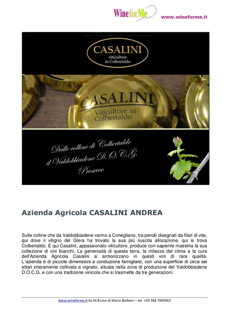 wfm-azagcasalini-22126432 by mario19619 via Slideshare