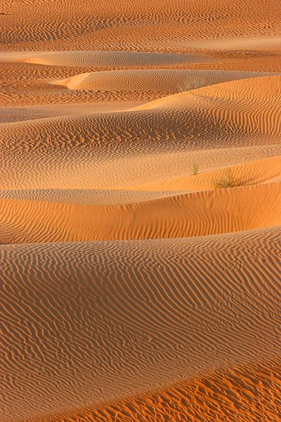 Desert Sands Patterns, Hadramawt: Orange, Pattern, Color, Waves, Desert Sands, Sands Dunes, Earth, Art Quilts, Landscape