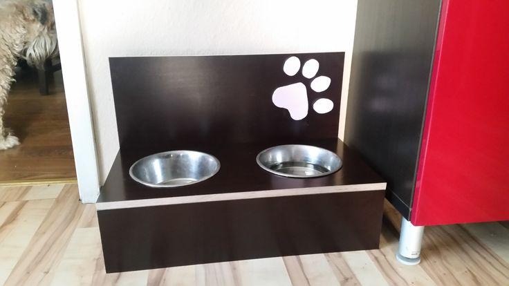 Hundebar Bauanleitung zum selber bauen Heimwerker-Forum Best - tür für küchenschrank
