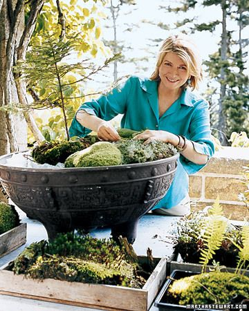 How to make moss planted bowls - Martha Stewart Gardening