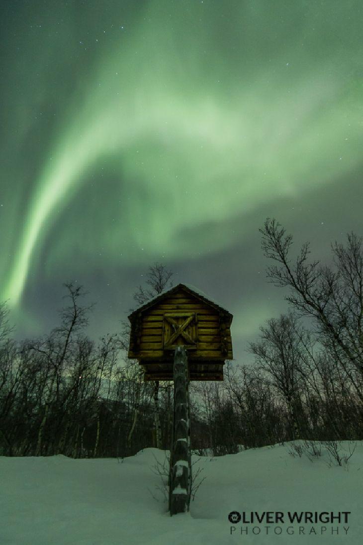 Auroras - Abisko, Sweden