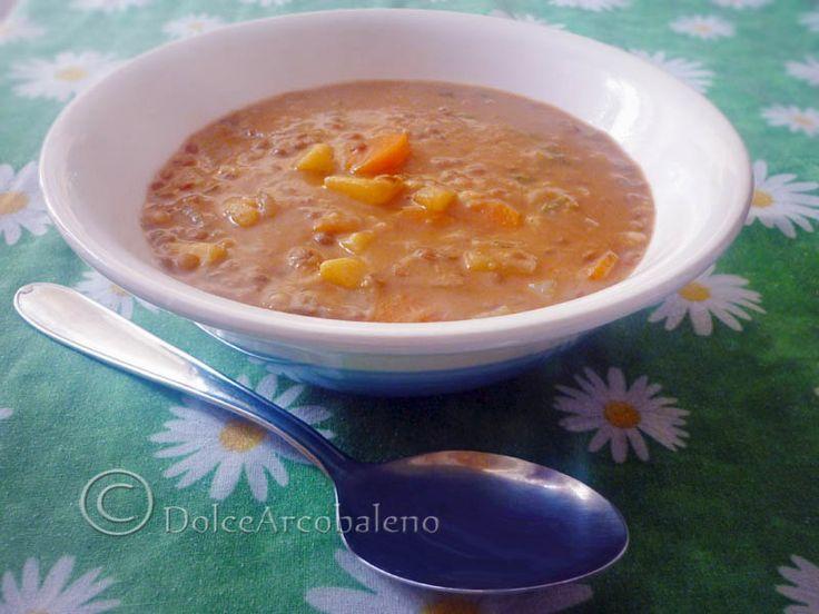 Cercate un'alternativa alla solita zuppa? Questa fatta con le lenticchie e le patate rappresenta quello che cercate: un sapore forte attenuato dalle patate e reso particolare semplicemente con l'uso delle spezie, senza olio.