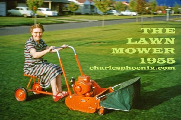 58 best lawn humour images on pinterest
