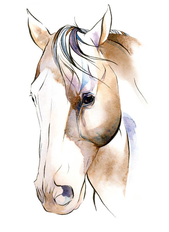 """Horse Art: """"Boots II"""", Archival Giclee Watercolor & Ink Painting Reproduction. $25.00, via Etsy."""