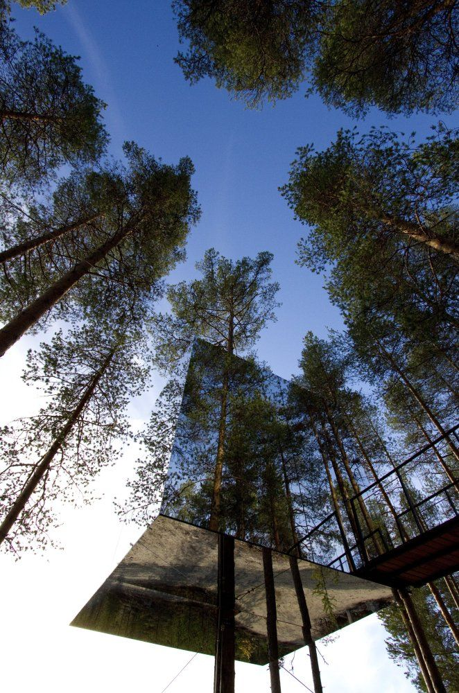 worlds coolest treehouse hotels photos - Treehouse Masters Mirrors