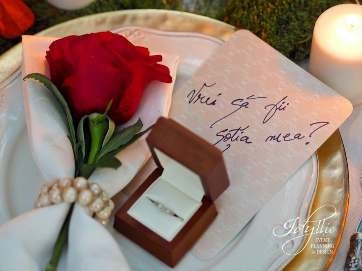 Romanian marriage proposal | amazing surprise | cerere in casatorie in Parcul Herastrau
