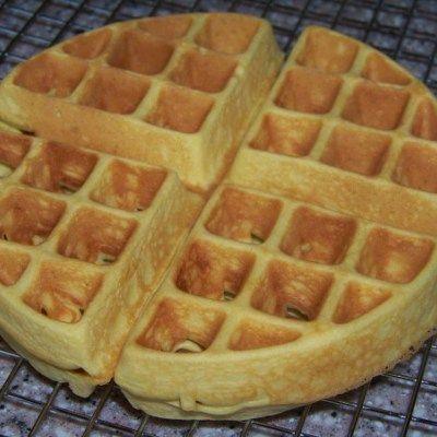 DO NOT MAKE AGAIN. D.R.Y   Coconut Flour Belgian Waffles