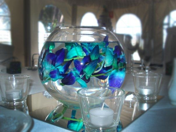 Pin By Cindy Lozano On Arianna S Turquoise And Purple Quinceanera Pinterest