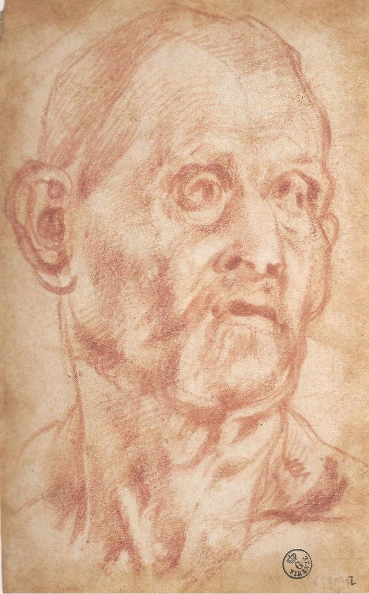 Pontormo - Disegno di volto 001.jpg