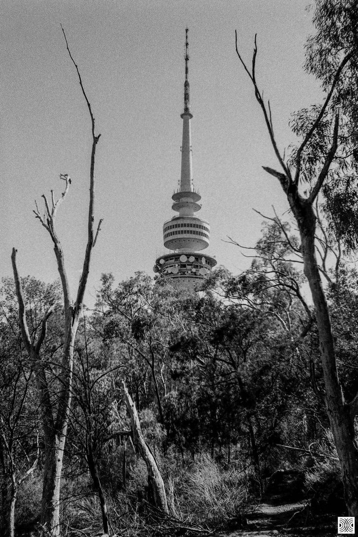 https://flic.kr/p/GSFyK9 | City | My Canberra - on film mainly around the Black Mountain, back in 2014  ... Telstra Tower above...  Olympus XA, Kodak T-Max 100  www.pavelvrzala.com