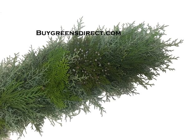 25′ FRESH Carolina Sapphire, Blueberry Cedar, Arbavida & Leyland Cypress Garland
