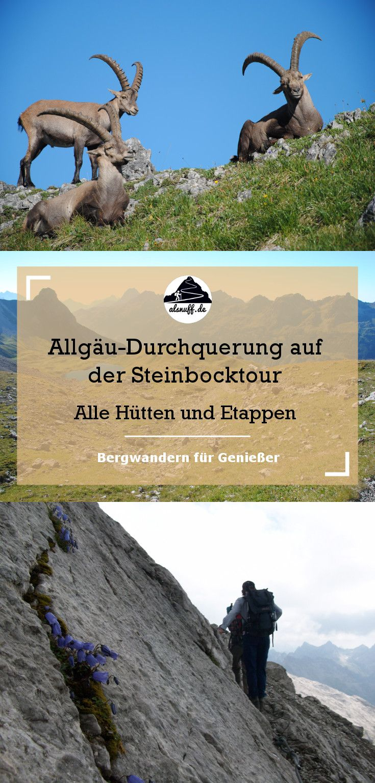 Durch die Allgäuer Alpen auf der Steinbocktour - Alle Hütten und Etappen #berge #hüttenwandern #hiking #outdoor #alpen #allgäu