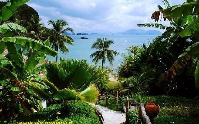 In Thailandia in viaggio di nozze, dove andare L'Isola di Koh Samui, sempre nel sud,coglie il fascino dei turisti quando si tratta di bellezza della natura. Benedetta dalla natura con spiagge di sabbia bianca, un'entroterra con foreste pluviali r #viaggiare #turismo #sposi #thailandia
