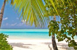 Die Malediven sind paradiesisch kleine Inseln mit schneeweissen Sandstränden und tiefblauen Lagunen.  #malediven #indischerozean #hotelplan #lastminute