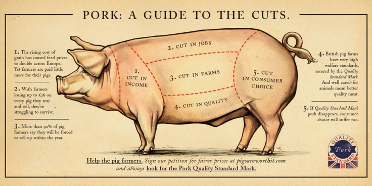 100+ ideas to try about pork cuts | food science, pork and ... printable circle of fifths diagram pdf cuts of swine diagram