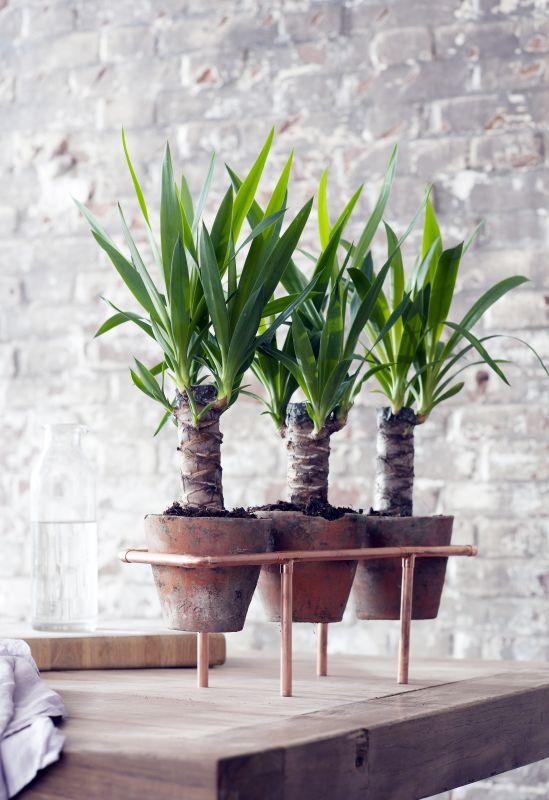Groen wonen & DIY | Maak zelf een koperen plantenstandaard • Stijlvol Styling - Woonblog •Stijlvol Styling – Woonblog
