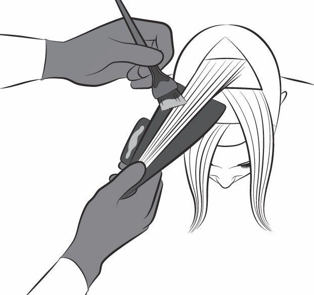схема окрашивания волос картинки