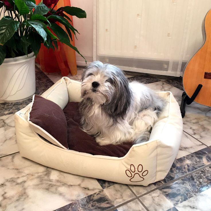 die besten 25 hundebett xxl ideen auf pinterest xxl hundebetten kissen haustiere und. Black Bedroom Furniture Sets. Home Design Ideas