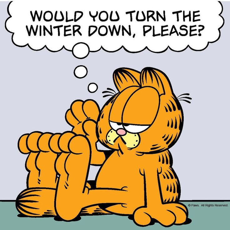 "2,538 Likes, 28 Comments - Garfield (@garfield) on Instagram: ""Too cold for #kittycats. #winter #garfield #cat #cats #catoftheday #catsagram #catstagram…"""