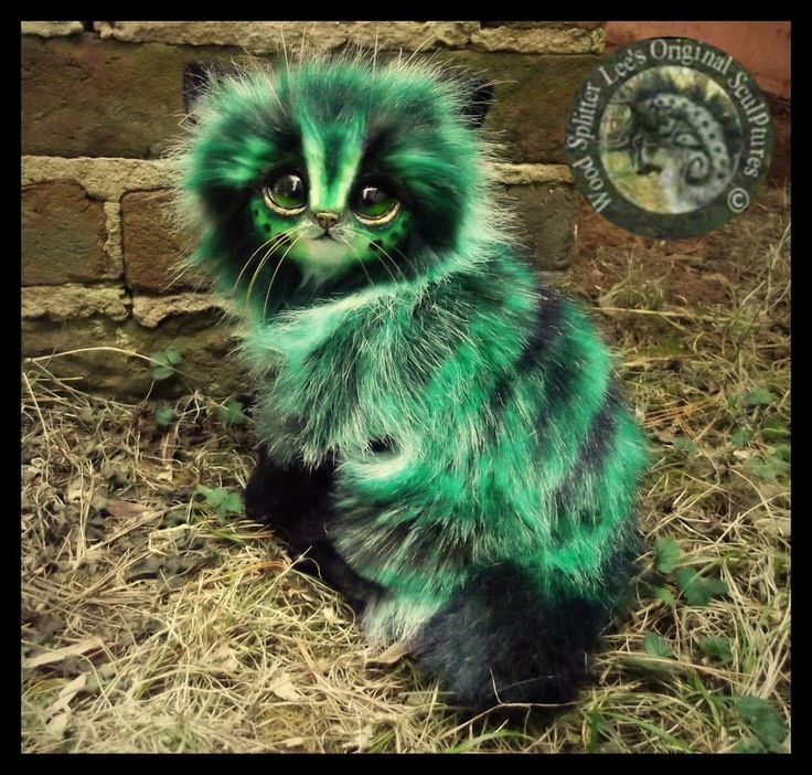 SOLD Pickles!  Handmade Poseable Fantasy Cat! by Wood-Splitter-Lee.deviantart.com on @DeviantArt
