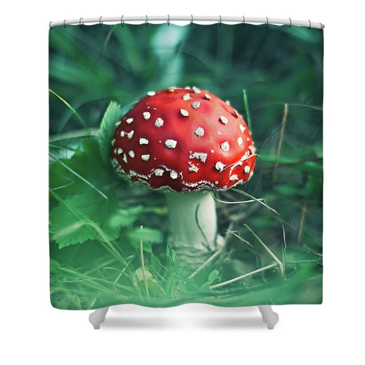 Shower Curtain featuring the photograph Red Mushroom by Oksana Ariskina Red fly agaric mushroom in a green grass. Available as mugs, posters, greeting cards, phone cases, throw pillows, framed fine art prints, metal, acrylic or canvas prints, shower curtains, duvet covers with my fine art photography online: www.oksana-ariskina.pixels.com #OksanaAriskina