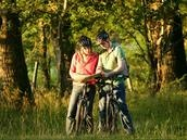 With over 100 miles of waymarked cycle routes to explore and many companies offering cycle hire and guided tours, the New Forest is a haven for cyclists