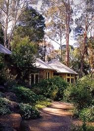 Australian Garden - now this looks familiar - trees always associated with home plus native plantings by house