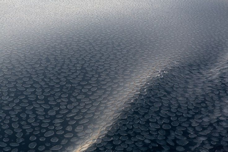 "<em>Ross Sea Pancake Ice</em>. ""Pancake Ice"" as seen from a vessel during late summer in the Ross Sea, Antarctica. Photographed by Sam Edmonds."