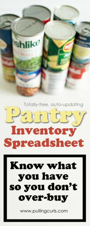 pantry inventory spreadsheet / excel / organization / food / canned goods / cans / ideas / storage