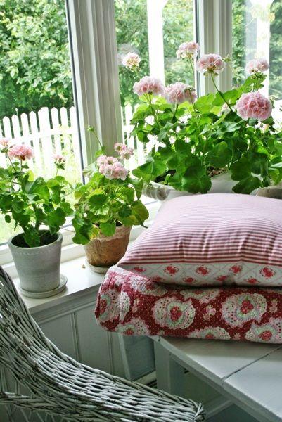 En titt inn... geraniums on the window ledge--very scandinavian.