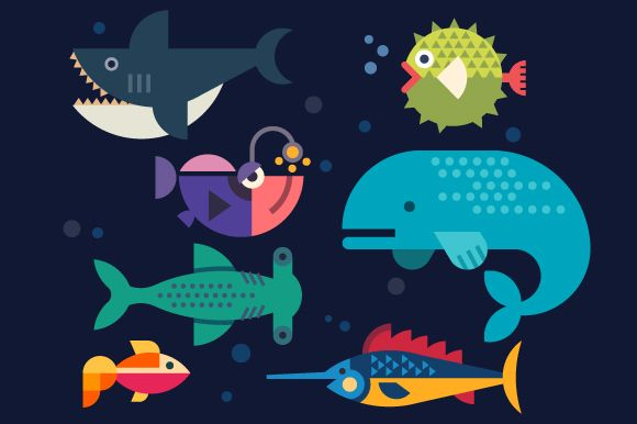 Sea life. Big fish: whale, shark, sw by TastyVector on @creativemarket